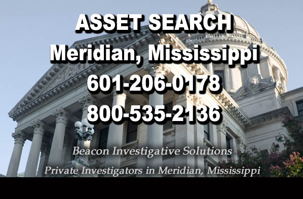 Meridian Mississippi Asset Search
