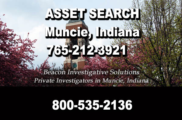 Muncie Indiana Asset Search