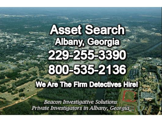 Albany Georgia Asset Search