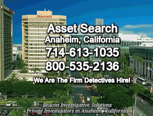 Anaheim California Asset Search