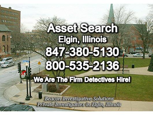 Elgin Illinois Asset Search