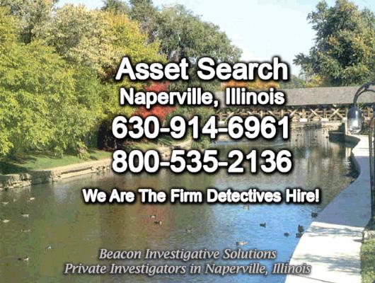 Naperville Illinois Asset Search